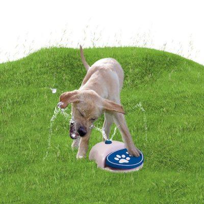 watersproeier hond pedaal zelfbediening